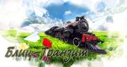 БЛИЦ -ТРАНЗИТ транспортно -экспедиторская компания